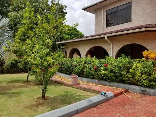 4bed house  at avacado  with nice gaeden and swimming poool image 7