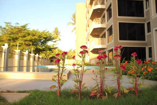 2/3 Bdrm Luxury Apartment in Msasani Beach