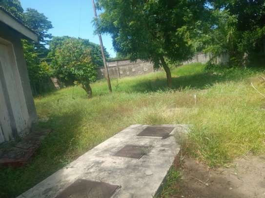 3bed house at regent estate $800pm image 6