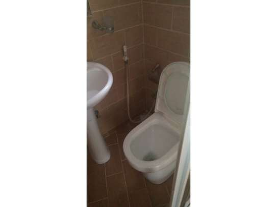 1be  fully furnished apartment at mikocheni a image 13
