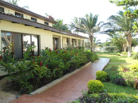 house for sale with nice botanical garedni in area 800sqm located at mbezi beach