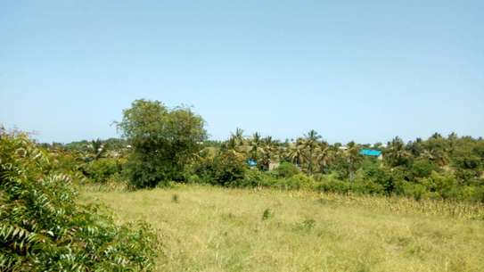 700 Sqm Plot at Goba