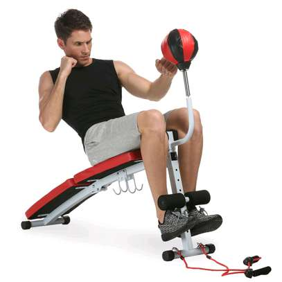 Sit-up bench with punching ball