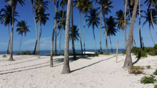 1,605sqm BEACHFRONT PLOT FOR SALE IN ZANZIBAR ISLAND