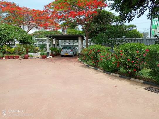 3bed house at oyster bay $2000pm image 11