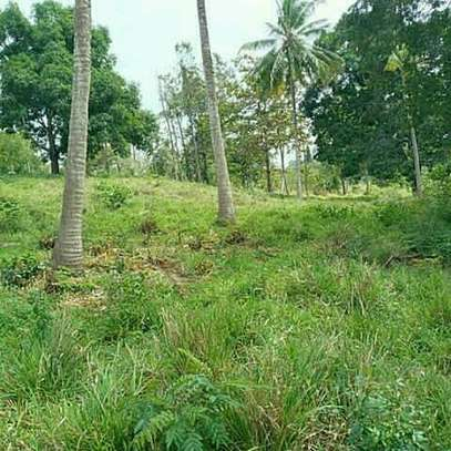 Land for Sale at Kibamba Near National Muhimili hospital image 3