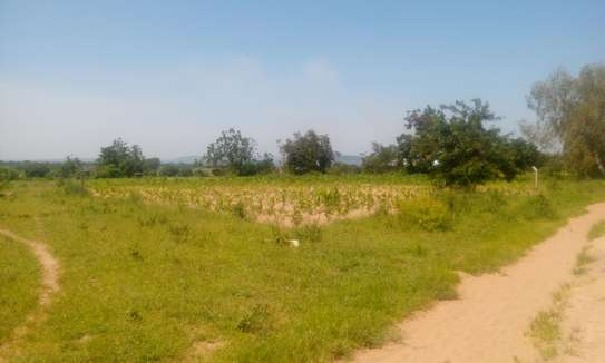 7500 Sqm Land in Usagara image 3