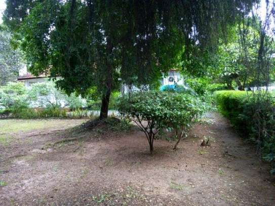 4bed houde at oyster bay $2000pm image 12