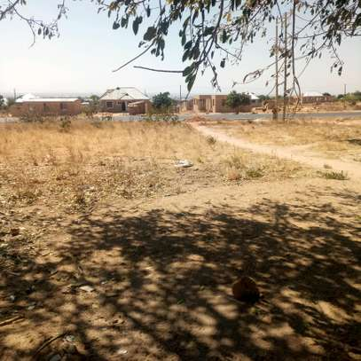 PLOT FOR SALE AT KISASA IN DODOMA TOWN
