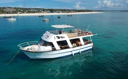 Excursion boat for charter or sale image 1