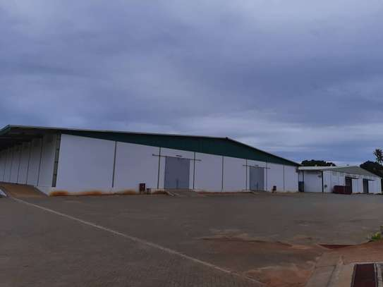 12000 Square meter warehouse available for rent along Kilwa Road image 3