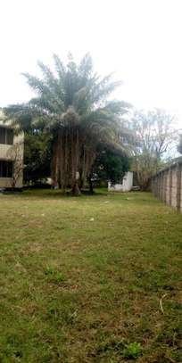 House for rent located at Mikocheni regent estate opposite wamata image 2