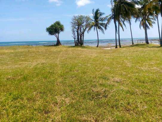 Beach plot for sale in kigamboni. image 7
