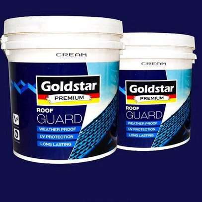 Emulsion color, silk, weather guard available all color image 1
