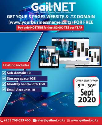 Get your 3 pages website design & .TZ domain for free