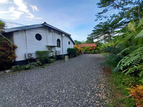 OYSTERBAY BUNGALOW FOR RENT image 5