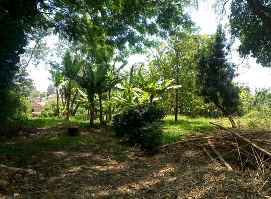 1 ACRE OF LAND FOR SALE AT SAKINA image 6