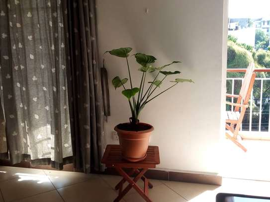 2bed apartment furnished at masaki $650pm fixed price image 3