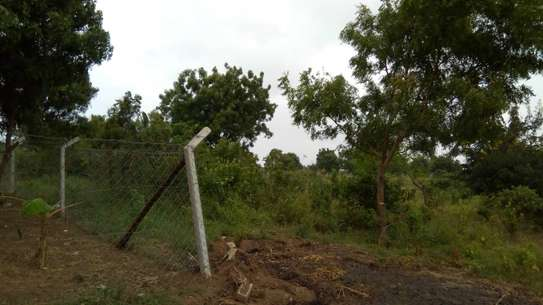 800 Sqm Plot at Goba