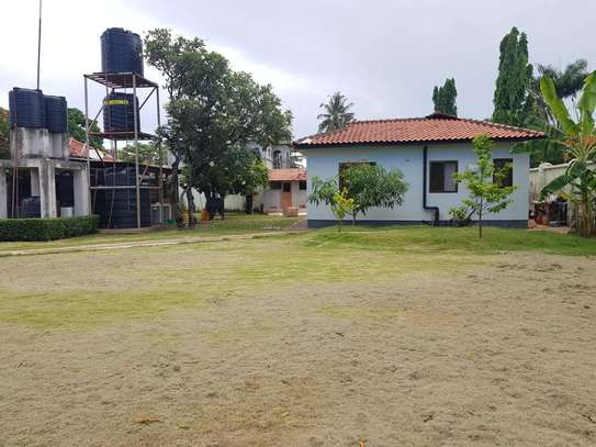 4 bed room stand alone house with big compound  for rent at mikocheni ridhiwani image 3