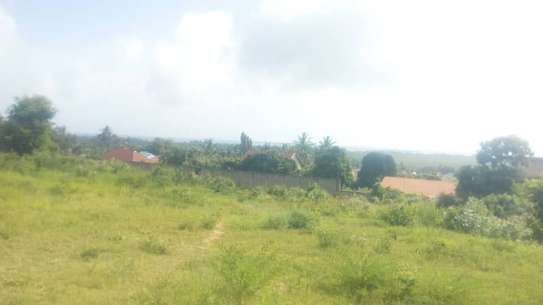 3 actre plot along main rd ideal for  hotel or apartment with sea view $1m image 4