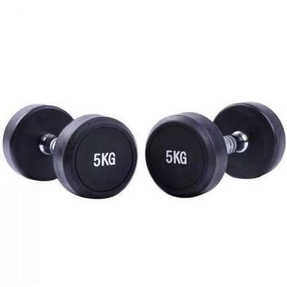 Fixed Ruber Dumbell 5KG image 1