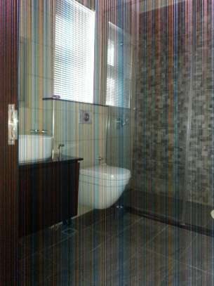 5 Bedrooms Home For Rent In Oysterbay image 12