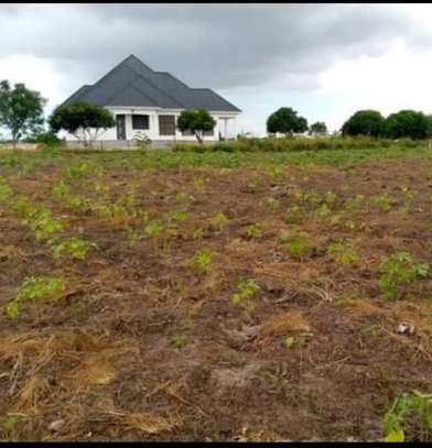 PLOTS OF LAND WITH UTILITIES FOR SALE image 1