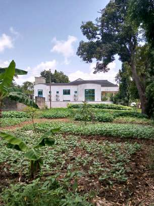 2400 Sqm with House for sale Ada Estate Kinondoni. image 1