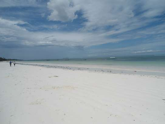 2850 Sqm Land Ocenfront at Matewe Village in Zanzibar Island image 9