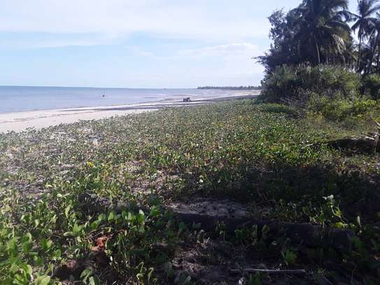OCEANFRONT LAND FOR SALE IN TANGA CITY image 5