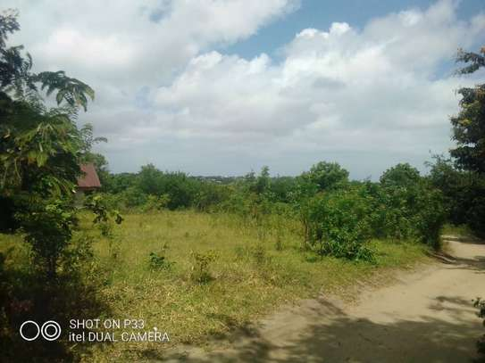 plot for sale at salasala image 2