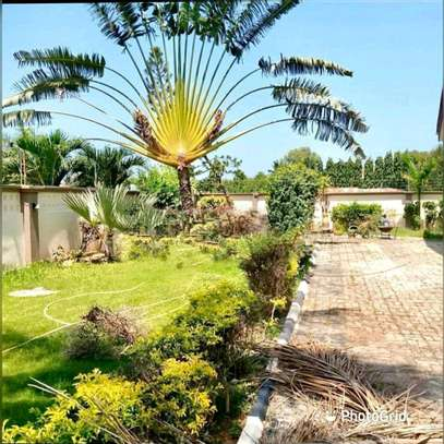3 Bedroom House Mbezi Beach image 7