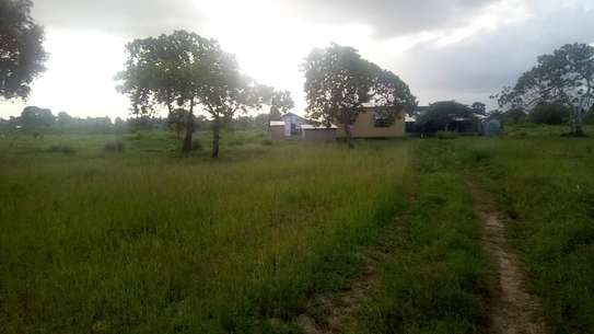 Land for sale very cheap-Kiromo shule junction of bagamoyo image 3