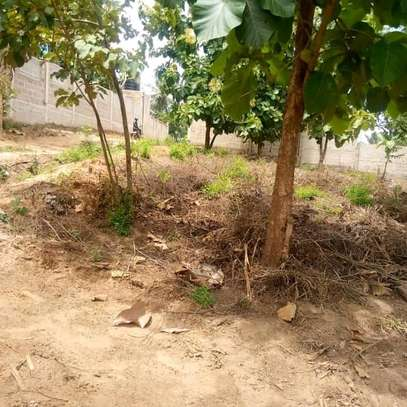 Plot for sale t sh mL 35 image 3