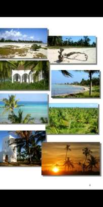13/57 Acres Beach Plot in Lindi