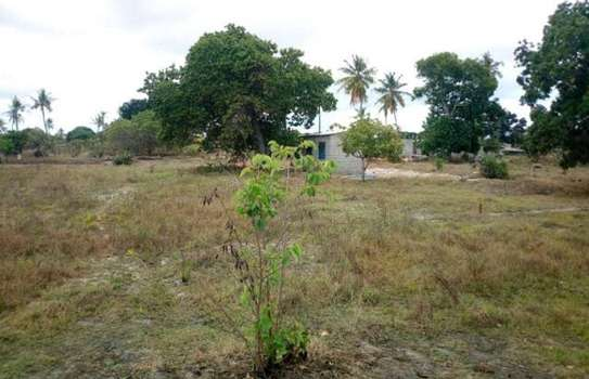 KIGAMBONI AWESOME PLOT AT VERY LOW PRICE, BUY TO BUILD YOUR DREAM HOME image 2