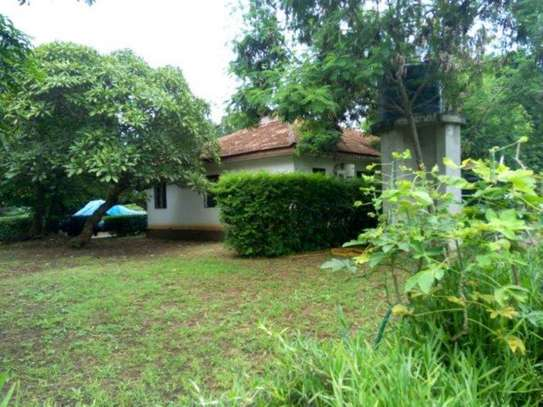 4bed house at oyster bay $2000pm z image 2