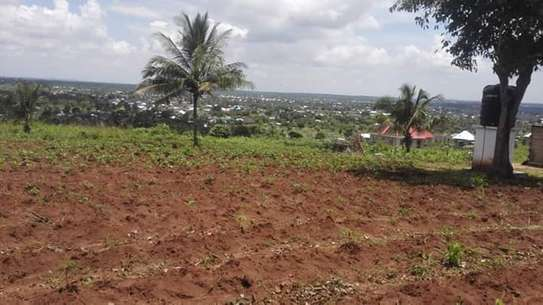6.5 acre at lugano kinyenze tsh 700,000 image 6