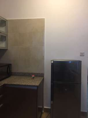 3 Bedrooms fully  furnished Apartment at Upanga image 6