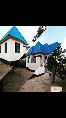 Golden opportunity:3 bdrms House going extremely cheap at Mbagala CHAMAZI image 2