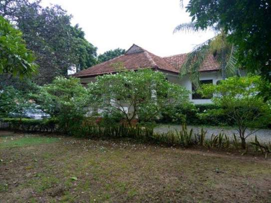 4bed house at oyster bay $2000pm z image 3