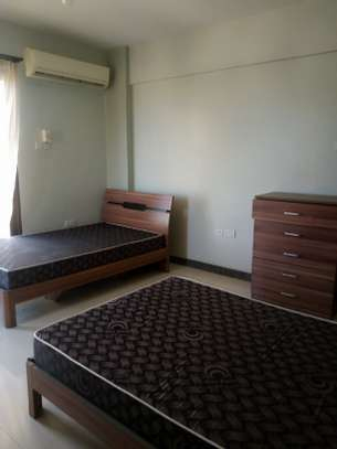 Fully furnished 2 bedroom apartment for rent at Upanga image 5