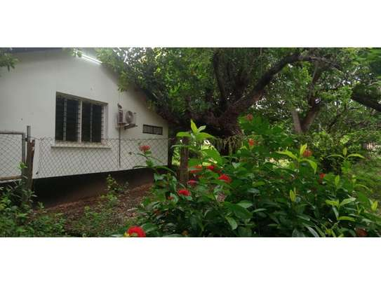 amaizing beach house for rent at ras kilomoni $1200pm image 7