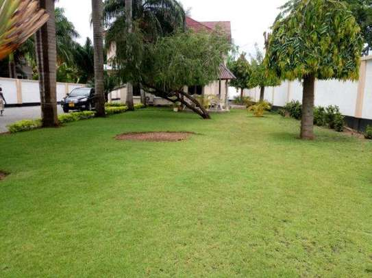 4bed house along main rd kawe beach $1300pm i deal for office cum residance image 14