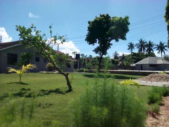 4bed house at mikocheni $1500pm image 9