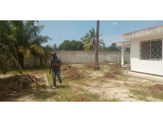 4bed house  wit big compound at mikocheni a $800pm i deal for office image 6