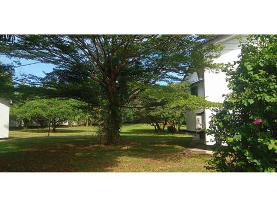 4bed house at masaki with mature garden,pool,generator $5000pm image 10