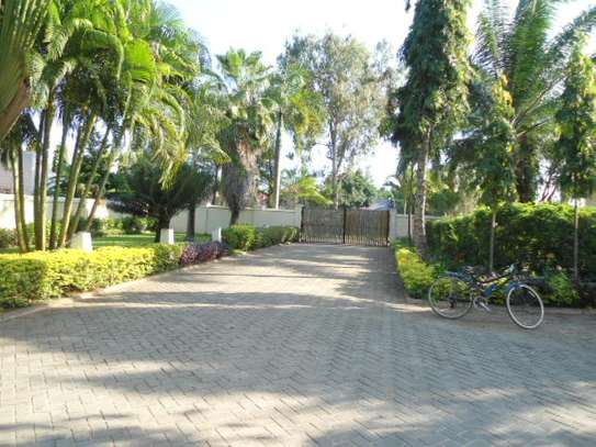 4bed house for sale at mbezi beach 2800sqm area with swiming pool image 6