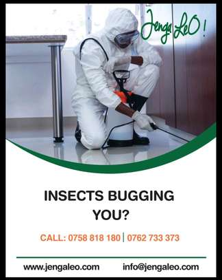 Fumigation, Cleaning and Maids services